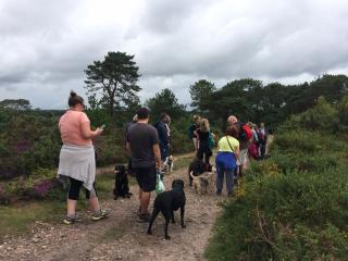 Group of dog walkers stood listening